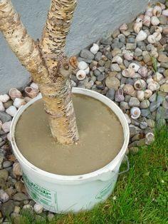 trittsteine und blumenkübel aus beton | selber machen, Gartenarbeit ideen