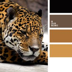 Warm soft color palette.  Based on a combination of brown and red tones.  Black and white perfectly complement these shades.  The interior design for the living room in natural style - wooden floors, soft red carpet and white or black furniture.  The clothes are different fur - fur coats, hats and decoration.