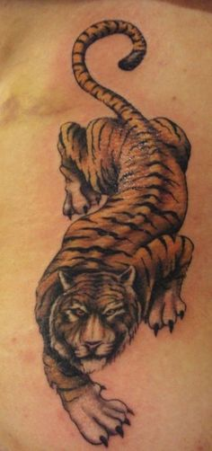 Leg+Tiger+Tattoos+Designs+For+Hot+Women+Girls+2012,.jpg (320×682)