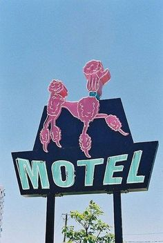 Pink Poodle Motel have you see before???