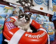 "Grumpy Cat's Tips For Staying True to Yourself: ""Never Start Caring"" #Tard #TardarSauce #GrumpyCat"