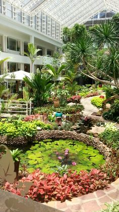 Dusit thani pattaya - tropical garden