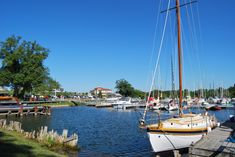 Annual Wooden Boat Festival at the Port of Newcastle Marina! Free admission, boat and vendors display, children's games and more. Vendor Displays, Children Games, Ontario Travel, Aerial Yoga, Picnic Area, Boater, Wooden Boats, Newcastle, Festivals