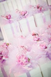 Next Show Details | Sunshine Coast Bridal Showcase