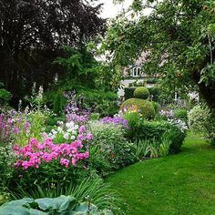 Tonight I was invited to see an old privat garden in the neighborhood. What a charming place. I'm sure, you like it ... #clausdalby #garden #flowers #blomster