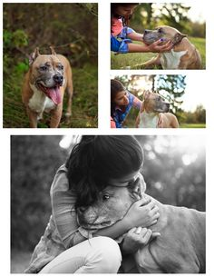 Portland, Oregon Pet Photographer, For the Love Pet Photography