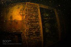 Crane underwater by sergemi #nature #photooftheday #amazing #picoftheday #sea #underwater