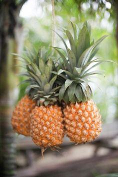 Pineapples...