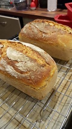Polish Bread Recipe, Polish Recipes, Amish White Bread, My Favorite Food, Favorite Recipes, Homemade Pesto Sauce, Bread Recipes, Cooking Recipes, Patties Recipe