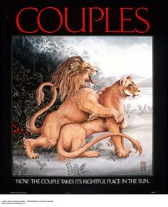Couples by Heather Cooper Great Photos, More Fun, Image Search, Portrait Photography, Teddy Bear, Canada, Paintings, Culture, Graphic Design