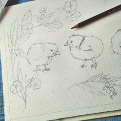 Spring chicks drawing in graphite,  ready to start watercolour tomorrow, cute art print available soon in my Etsy  perfect for kitchen decor, farmhouse decor, home decor