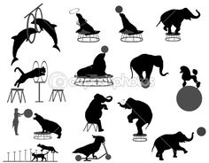Illustration of circus show vector art, clipart and stock vectors. Circus Show, Circus Art, Circus Theme, Elephant Silhouette, Black Silhouette, Silhouette Cameo, Shadow Theatre, Religion, Elephant Illustration