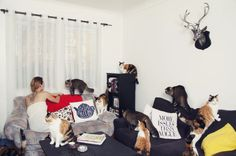 We've heard you like cats. Lots of them. So instead of showing you another cat video or cute cat meme, we're presenting you to a photo series full of the fabulous felines. These photos were shot by photographerAndreanne Lupien and feature cats and their crazy owners in their homes, doing crazy cat lover things like […]
