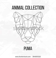 Geometric animal puma head line silhouette isolated on white background vintage design element image