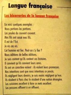 17 preuves que la personne qui a créé la langue française était un peu bourrée