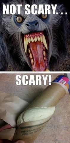 *Scary Rolls* ~For More Funny Pictures & Quotes, Please Follow Us!~