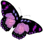 A symbol for Fibro: I'm kinda curious. I understand the purple ribbon, but does anyone know how the purple butterfly got associated with Fibromyalgia? Purple Ribbon, Purple Butterfly, How To Pronounce, Pretty Cool, Celtic, Irish, Symbols, Fibromyalgia, Languages