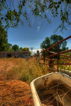 No farm is complete without the old bath tub in the field