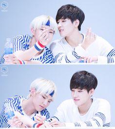 Wonwoo & Hoshi