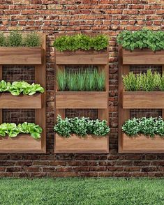 Herbs can be grown anywhere you like but a having a herb garden design makes it more appealing. Wall Herb Garden Indoor, Hanging Herb Gardens, Hanging Herbs, Herb Wall, Wall Herb Gardens, Vertical Vegetable Gardens, Indoor Herbs, Vertical Garden Design, Vegetable Garden Design