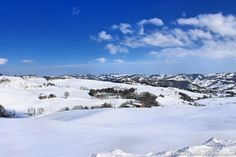 sembra marzo in Norvegia, ma è marzo in Italia! - http://www.erbaviola.com/2013/03/04/neve-che-si-scioglie-fili-di-paglia-che-arrivano-nellorto.htm