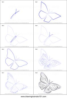 How to Draw a Monarch Butterfly printable step by step drawing sheet : DrawingTu. - How to Draw a Monarch Butterfly printable step by step drawing sheet : - Easy Butterfly Drawing, Butterfly Art, Butterfly Painting, Monarch Butterfly, How To Draw Butterfly, Easy Rose Drawing, Flower Art Drawing, Butterfly Sketch, Simple Butterfly