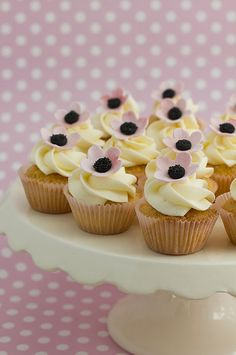 mini poppy cupcakes web