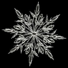 How to photograph snowflakes with DSLR http://www.photo-geeks.com/how-to-photograph-snowflakes-with-dslr/