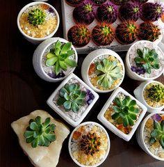 Palak Paneer, Fresh Rolls, Ethnic Recipes, Food, Essen, Meals, Yemek, Eten