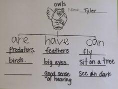 Five in a Row #FIAR: Owl Moon #homeschool