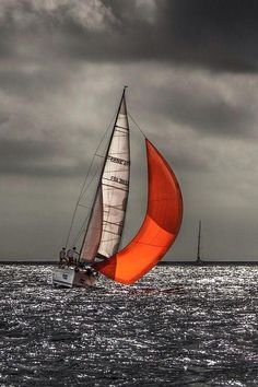Orange/red spinnaker in the late afternoon light