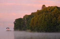 Luontokuva.org - Ruissalo