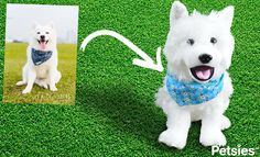 Petsies are custom stuffed animals made from photos of your pet