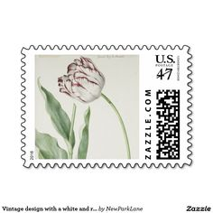 U.S. Postage stamps with vintage design with a white and red tulip - Dutch Art via:: www.zazzle.com/newparklane*