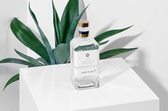 "Packaging for Tequila Casa Pujol 87 by Anagrama  ""The purity and flavor of Tequila are central features standing out from this product. We developed a simple brand that manages to highlight these attributes elegantly. The typographical arrangement has..."