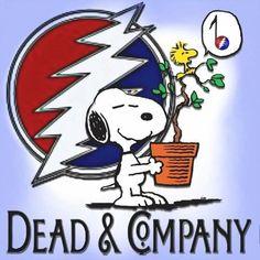 Grateful Music Publications: Dead and Company John Mayer Grateful . Mickey Hart, Dead And Company, All Band, Forever Grateful, John Mayer, Winter Wonder, Popular Music, Grateful Dead, Rock N Roll