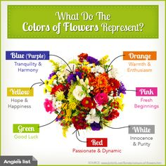 What the color of flowers mean