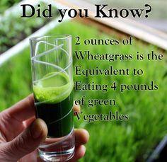 Wheatgrass | Smoothie | Green