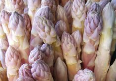 Precoce D'Argenteuil Asparagus seeds) An old traditional heirloom asparagus seed, this gourmet variety is highly esteemed in Europe for its delicious stems Garden Seeds, Planting Seeds, Asparagus Seeds, Organic Seeds, Fruits And Vegetables, Veggies, Permaculture, Organic Gardening, Europe