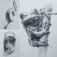 소묘 Pencil Art, Pencil Drawings, Art Drawings, Animal Sketches, Drawing Sketches, Realistic Animal Drawings, Visual Art Lessons, Object Drawing, Charcoal Art