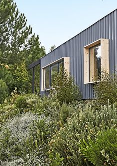Exterior, Metal Siding Material, and House Building Type Boxy spruce-framed windows punctuate the 1,615-square-foot structure, which is clad in corrugated metal.