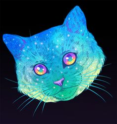 GALACTIC CATS on Behance