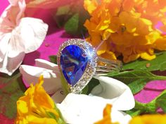 Tear Drop Kashmire Blue Topaz with Diamonds   #kashmire #blue #topaz #sparkle #jewelry #fashion #one #of #a #kind #frank #reubel #quartz #pendant #necklace #fine #jewelry #unique #style #style2017 #gold #accessories #tasteful #celebrity #jewelry  #amethyst #opal #diamond #engagement #ring