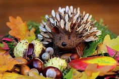 Looking for ideas, tips & tricks for your DIY Fall Decor Projects? This collection features of the best DIY Fall Decor ideas for the home and garden. Inspire Me Home Decor, Diy Craft Projects, Diy Crafts, Project Ideas, Felt Crafts, Decor Crafts, Diy Pour Enfants, Room Freshener, Autumn Home