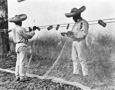 Tina Modotti: Men who adjust their nets, Mexico, undated,