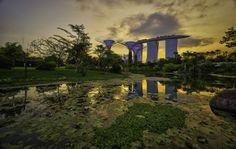 Garden by the bay sunset by Senthil Kumar Damodaran on 500px