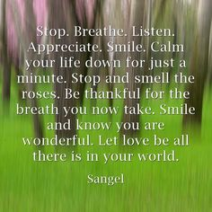 Stop. Breathe. Listen. Appreciate. Smile. Calm your life down for just a minute. Stop and smell the roses. Be thankful for the breath you now take. Smile and know you are wonderful. Let love be all there is in your world.