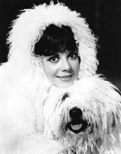 Natalie and an Old English Sheepdog.