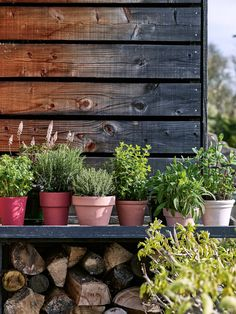 French Home Decor Upgrade Mismatched Planters With This Super-Simple Paint DIY.French Home Decor Upgrade Mismatched Planters With This Super-Simple Paint DIY Cheap Beach Decor, Cheap Home Decor, Diy Planters, Garden Planters, Herbs Garden, Planter Ideas, Fresco, North Facing Garden, Cheap Plants