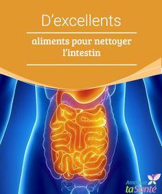 D'excellents aliments pour nettoyer l'intestin   Vous souhaitez nettoyer l'intestin, mais vous ne savez pas comment faire ? Venez découvrir les meilleurs aliments détox !